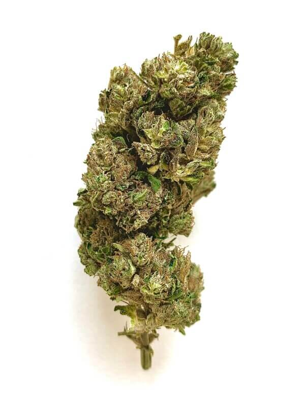 CBG White Hemp Flower